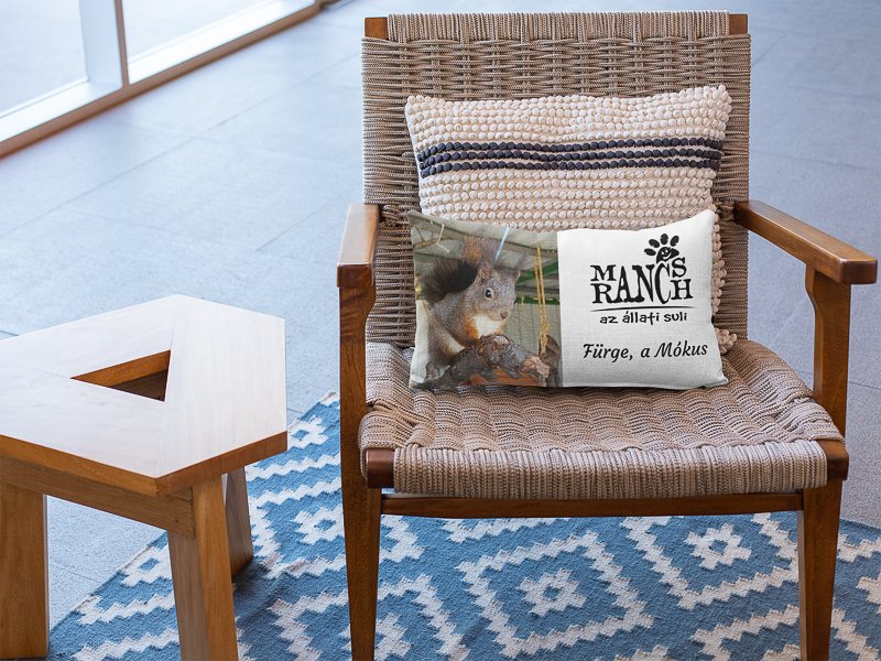 pillow-mockup-on-a-woven-chair-next-to-a-small-wooden-table-25904